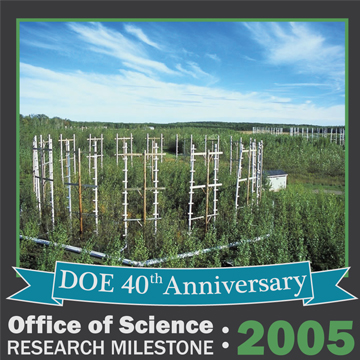 BER 2005 Higher Levels of Carbon Dioxide Led to Greater Tree Growth
