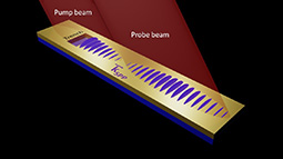 Ultrafast imaging of surface plasmons propagating on a gold surface.